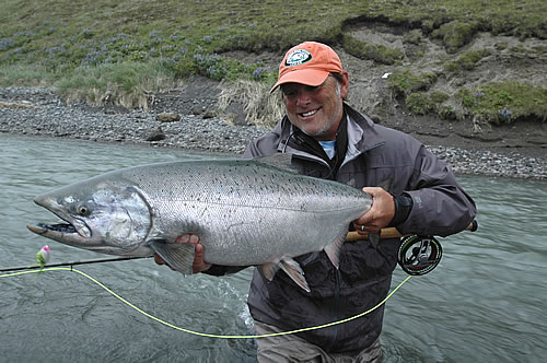 King salmon caught with a fly rod