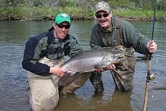 alaska-king-salmon014