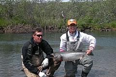 alaska-king-salmon018