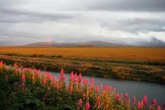 alaska-scenery005