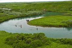 alaska-scenery010