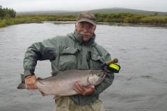 alaska-silver-salmon011