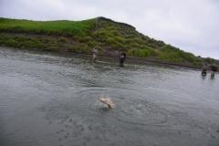 alaska-fly-fishing014