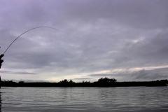 alaska-fly-fishing020